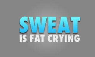 fatpastor.wordpress.com