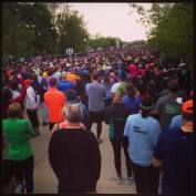 There were 12000 people that ran the race. We were gathered in corrals. The starting system was ingenious and really kept things moving. Right from the beginning of the race, there was plenty of room to run. I did a lot of passing, and never really had trouble getting through traffic.